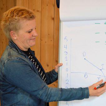 DISC grafiek uitleg - Tijd voor ontwikkeling - Groepsactiviteiten, workshops, teambuilding en trainingen Drenthe